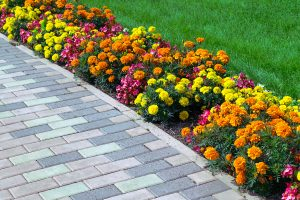 Brick and Paver Sealing and Cleaning in Ronkonkoma, NY | Island Soft Wash